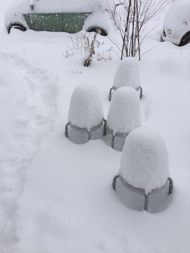 ひらいみも ブログ 大雪